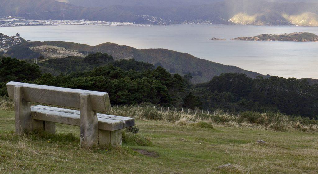 Mount Kaukau looking towards Petone and Somes Island