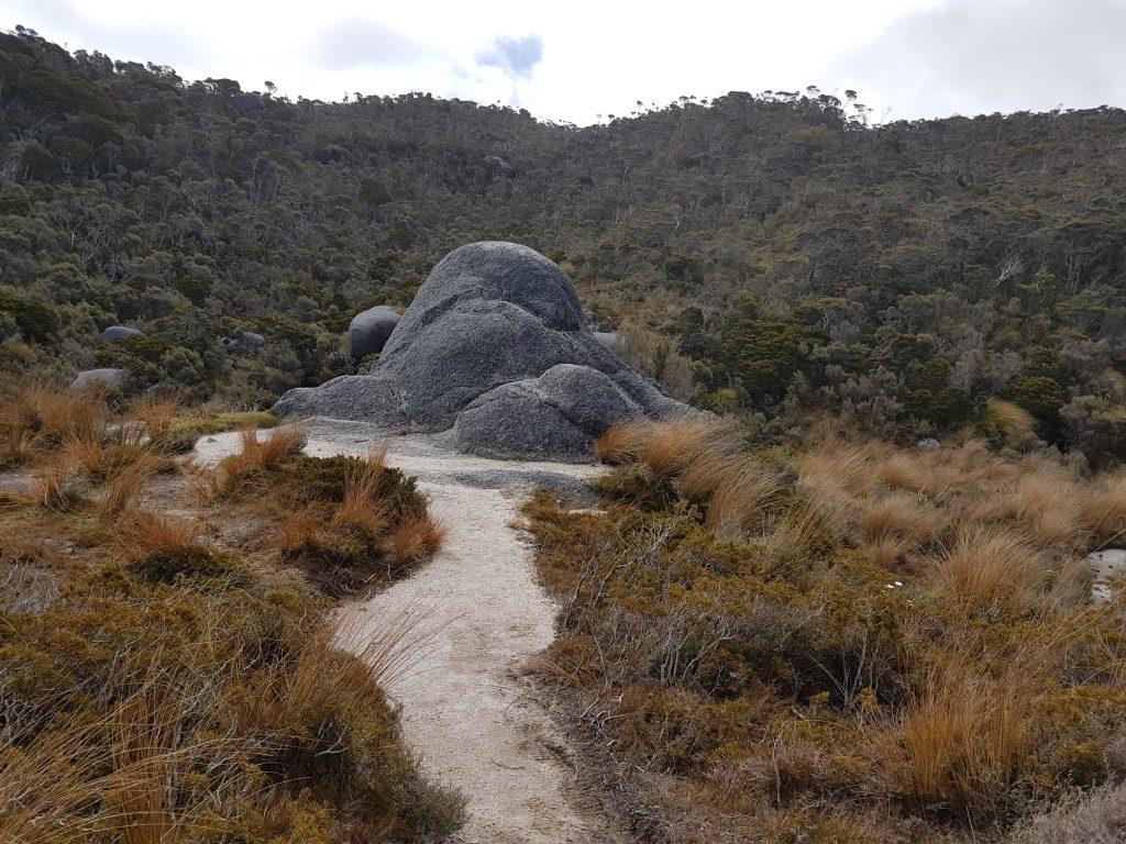 Heaphy Track Boulder