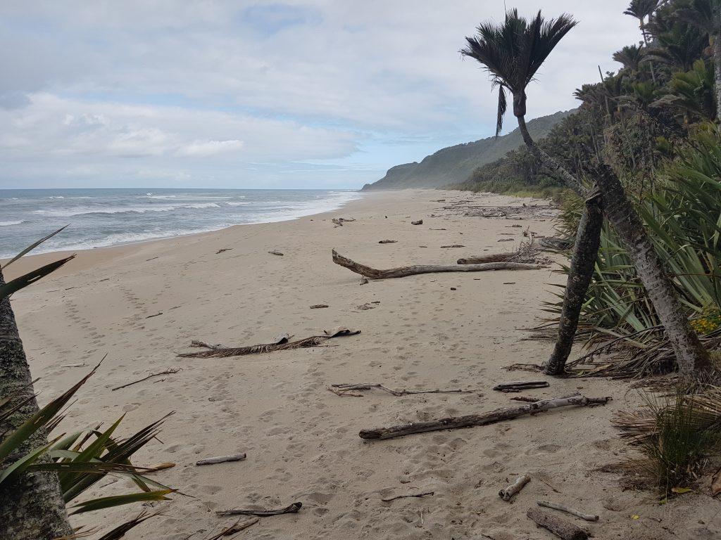 Heaphy Track Beach walk