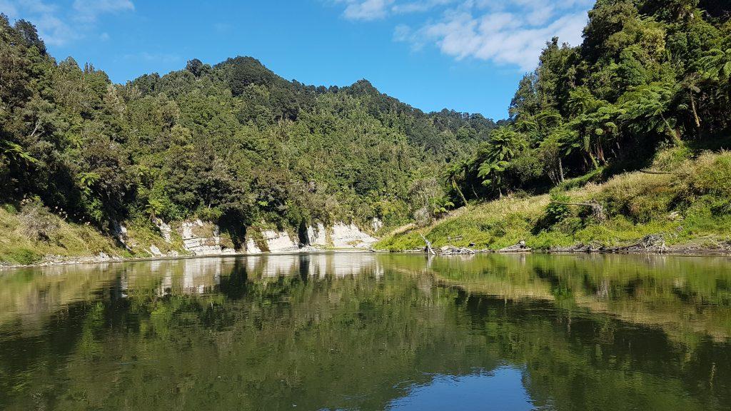 Whanganui River Journey 6