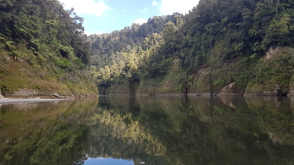 Whanganui River Journey 7