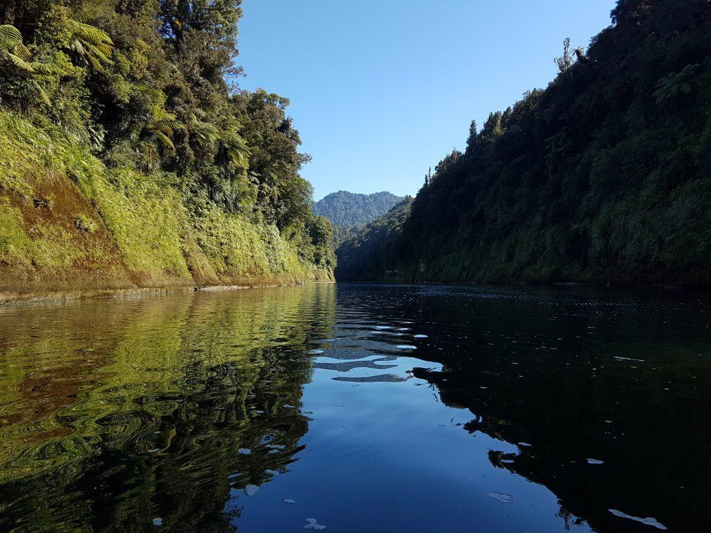 Whanganui River Journey 10