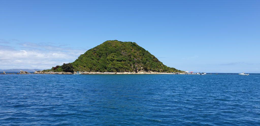 Browns Island - Kapiti Coast