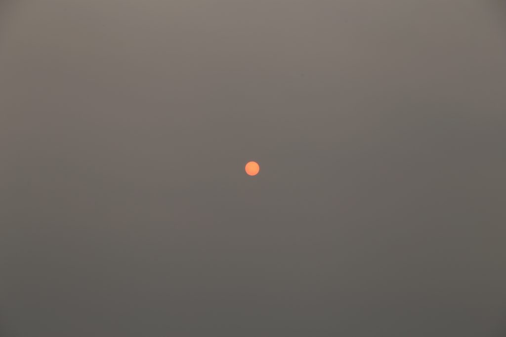 The sun early morning from Mt Holdsworth after Aussie fires